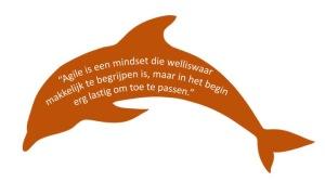agile dolfijn
